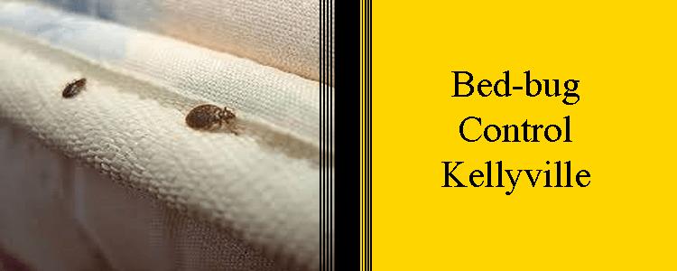 Bed Bug Control Kellyville